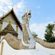 Wat Phumin in Nan, Thailand — Stock Photo #18546413