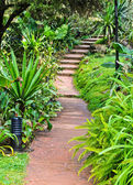 Stone pathway in garden — Stock Photo