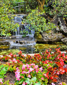 Waterfall in the garden — Stock Photo