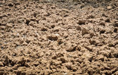 Soil nature background — Stock Photo