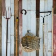 Agricultural tool — Stock Photo #23782013
