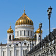 Cathedral of Christ Saviour — Stockfoto #25357267