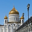 Cathedral of Christ Saviour — Stock fotografie #25357267