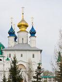 Spasso-yakovlevsky kloster — Stockfoto