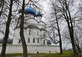 Suzdal Kremlin, Russia — Stock Photo