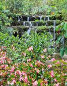 Garden waterfall — Stock Photo