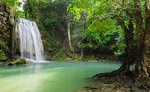 Cachoeira da floresta profunda — Fotografia Stock