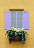 Colorful window with flower pots — Stock Photo