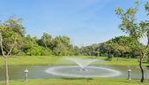 Grön park — Stockfoto