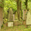 Juedischer Friedhof - jewish cemetary 13 - Stock Photo