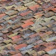 Stock Photo: Dachziegel - roofing tile 31