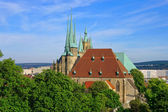 Erfurt cathedral 10 — Stock Photo