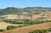 Monticciello in fall 01 — Stock Photo