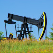 Stock Photo: Oil pump 06