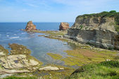 Hendaye Felsen - Hendaye rock 05 — Stock Photo