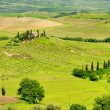 Stock Photo: Podere 38