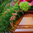 Stock Photo: Coffin 01