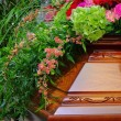 Coffin 01 — Stock Photo #13110509