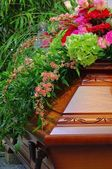 Coffin 01 — Stock Photo