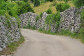 Cres Trockenmauern mit Weg - Cres dry stone wall and way 04 — Stock Photo