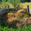 Stock Photo: Komposthaufen - compost pile 05