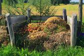 Komposthaufen - compost pile 05 — Stock Photo