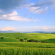 Stock Photo: ToskanHuegel - Tuscany hills 49
