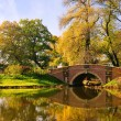 Woerlitzer Park Friederikenbruecke - English Grounds of Woerlitz Friederike — Stock Photo