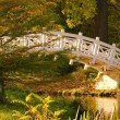 Woerlitzer Park Weisse Bruecke - English Grounds of Woerlitz White Bridge 2 — Stock Photo #13161415