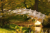 Woerlitzer Park Weisse Bruecke - English Grounds of Woerlitz White Bridge 2 — Stock Photo