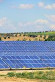 Solaranlage auf Feld - solar plant on field 05 — Stock Photo