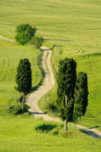 Toskana Huegel - Tuscany hills 22 — Stock Photo
