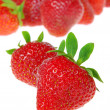Stock Photo: Erdbeere freigestellt - strawberry isolated 08