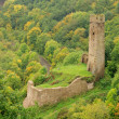 Stock Photo: Monreal Burg - Monreal castle 01