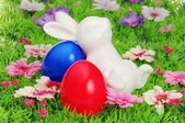 Ostereier auf Blumenwiese - easter eggs on flower meadow 29 — Stock Photo
