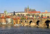 Vista de la catedral de praga. praga, república checa. — Foto de Stock