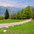 Stock Photo: Monte Baldo 05