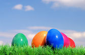 Ostereier auf Blumenwiese mit Himmel - easter eggs on flower meadow and sky 02 — Stock Photo