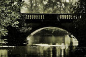 Woerlitzer Park Neue Bruecke - English Grounds of Woerlitz New Bridge 01 — Stock Photo