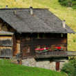 Almhette - chalet 10 — Stock Photo #14499309