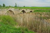 Sasamon remische brecke - pont romain de sasamon 02 — Photo