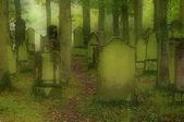 Juedischer friedhof - cementerio judío 02 — Foto de Stock