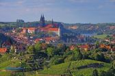 Meissen 02 — Stock Photo