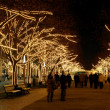 Berlin Unter den Linden Weihnachten - Berlin Under Linden Trees christmas 03 — Stock Photo #15323731