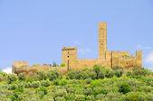 Castello di montecchio vesponi - el castillo de montecchio vesponi 03 — Foto de Stock