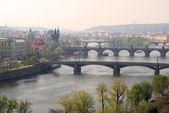 Prag Brecken von oben - Prague bridges aerial view 03 — Stock Photo