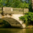 Woerlitzer Park Neue Bruecke - English Grounds of Woerlitz New Bridge 03 — Stock Photo