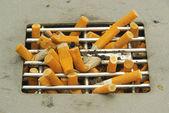 Zigarette - cigarette 01 — Stock Photo