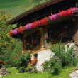 Almhette - chalet 06 - Stock Photo