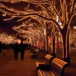 Berlin under linden trees in Christmas — Stock Photo #16047673